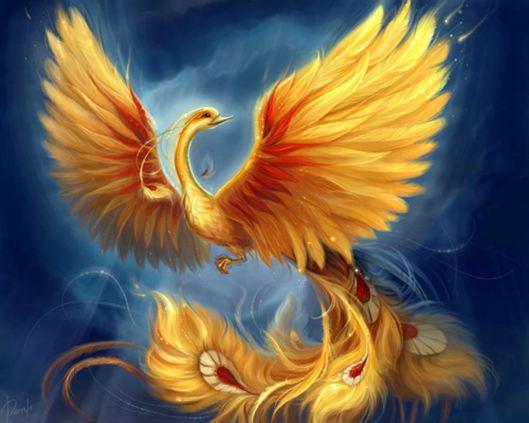 phoenix-pasare