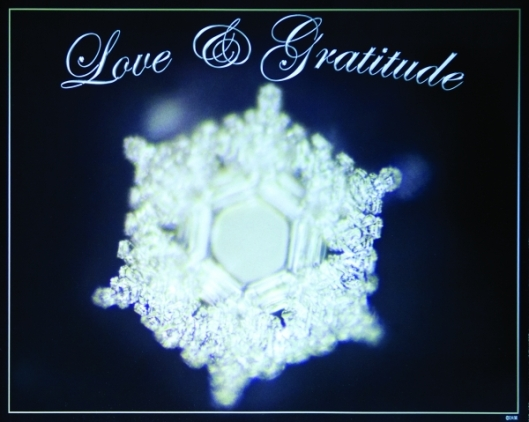 love_and_gratitude_poster__large